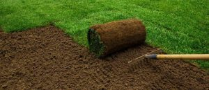 The Differences Between Turf and Artificial Grass 768x333